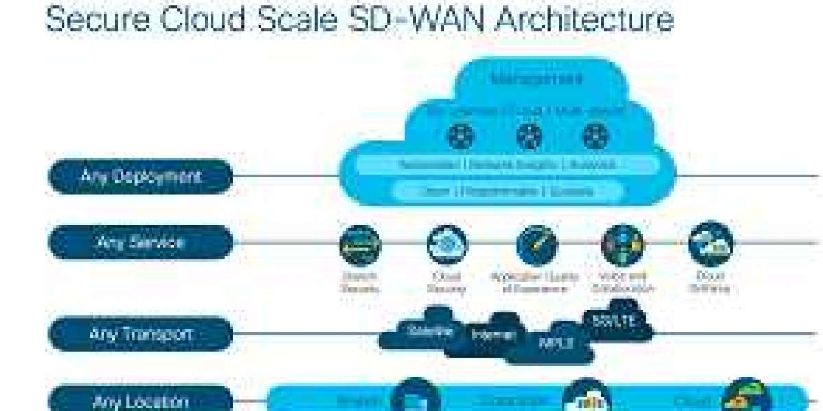 Apply Selecting SD-WAN Products Order To Gather All Vital Details